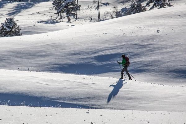 Ski de fond / Raquettes