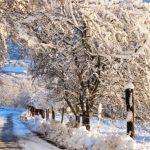 Le Chalet du Haut du Bout vue rue hiver